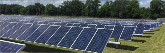 Constellation and URE install 11.8 MW Georgia Cattle Farm