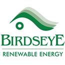 Birdseye Energy logo
